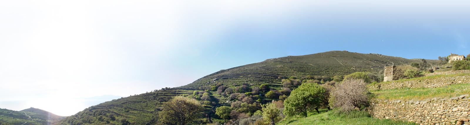 Tinos Eco Lodge – Ein Umweltfreundliches Reiseziel