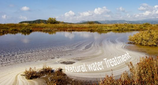 natural water treatment