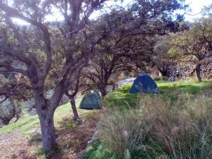 camping autumn