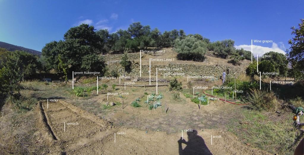 tinos ecolodge garden_poster_1