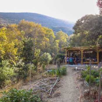 tinos ecolodge garden kitchen